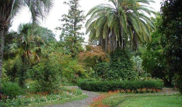Сухумський ботанічний сад