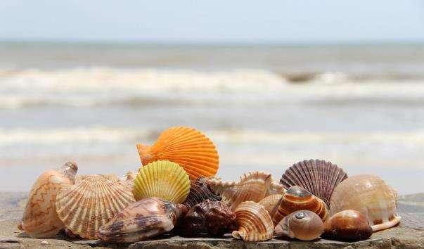 Пляжі Муйне