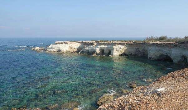 Затока Coral Bay