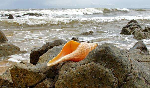Пляжі Фантьета