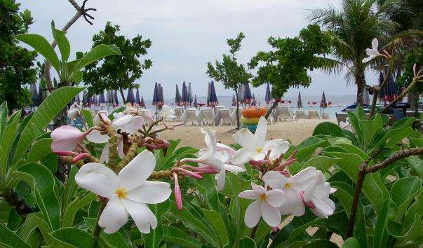 Пляж Самае Ко Лан