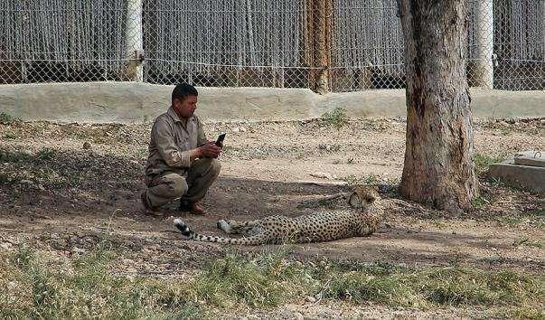 Зоопарк Фрігія